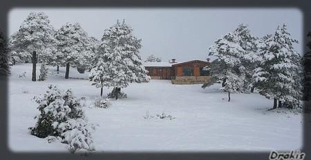 nevada enero_51