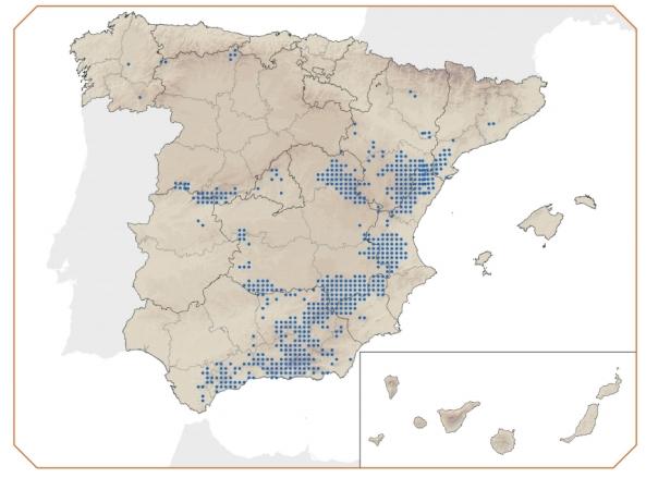 Mapa distribucion cabra montes